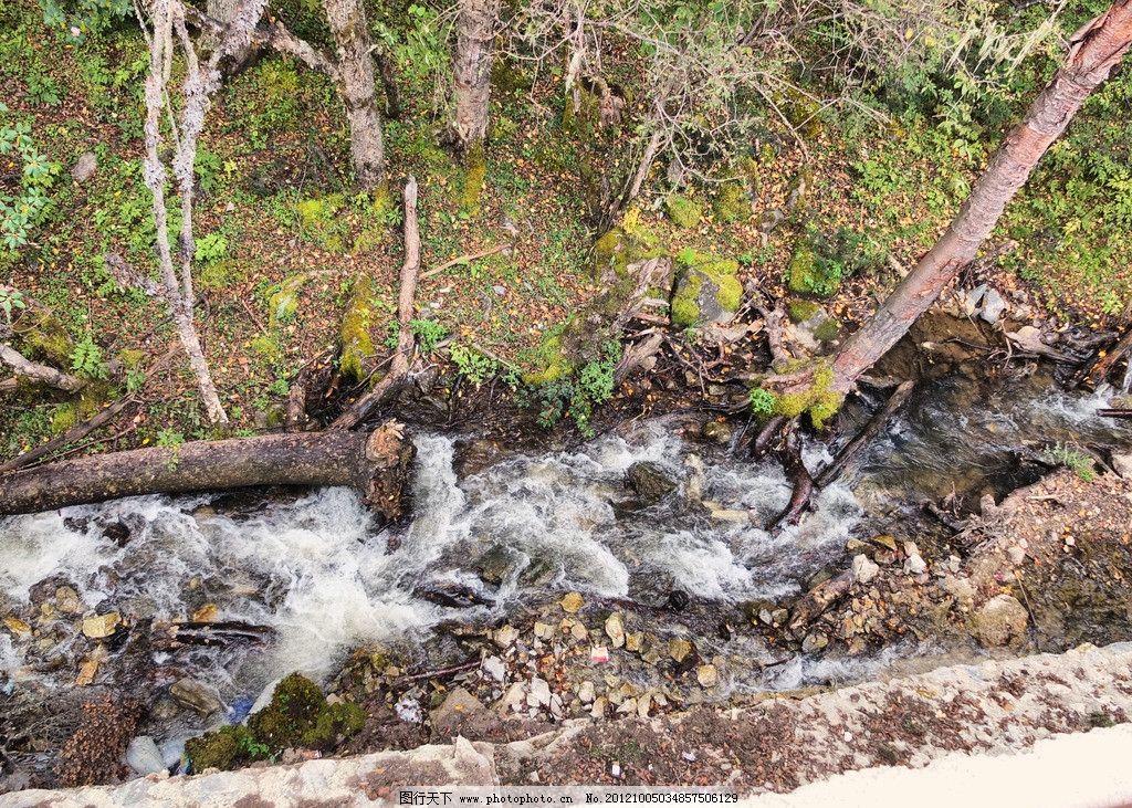 溪流 摄影 水流 树林 绿叶 自然风景 自然景观 72dpi jpg