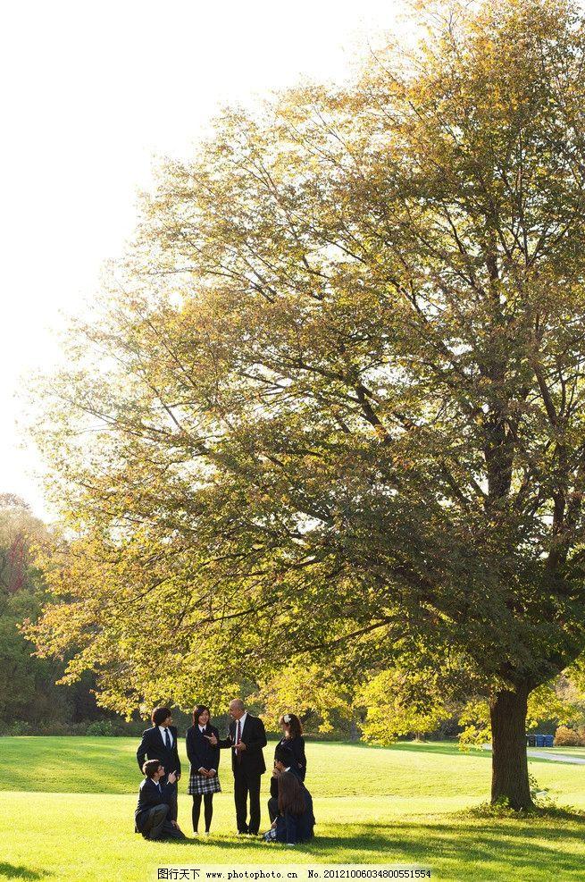 大树 学校 老师 学生 学习 自然风景 自然景观 摄影 300dpi jpg