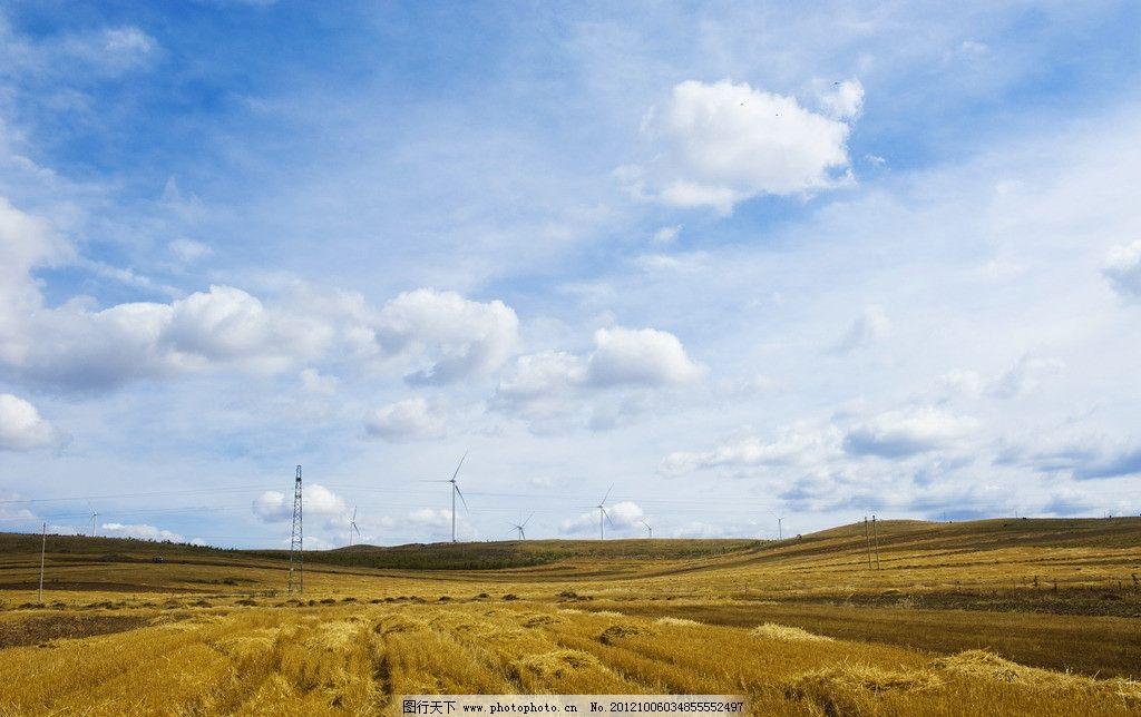 金色麦田 秋天 坝上 草原 十月 金色 麦田 秋收 收割 成熟 蓝天 白云