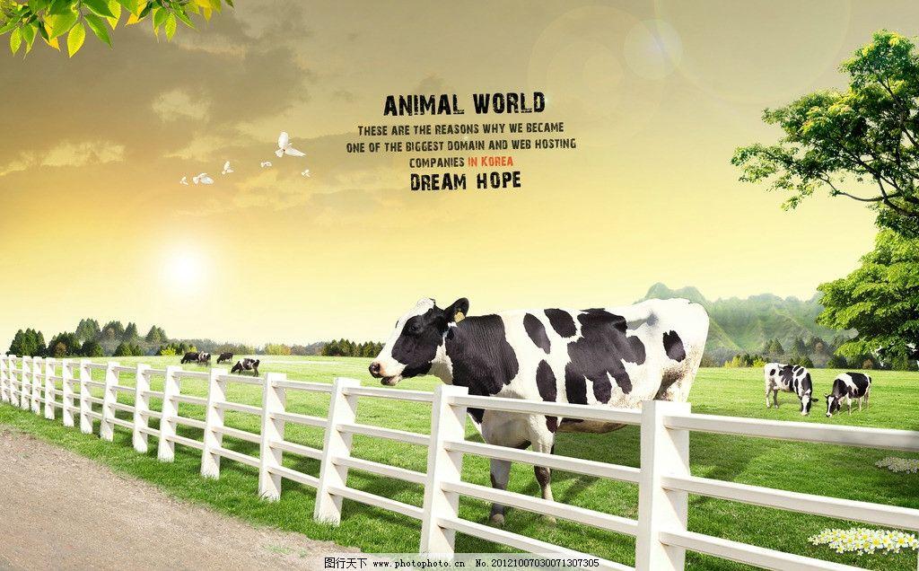 牧场 农场 奶牛 栅栏 草地 树木 牛群 海报设计 广告设计模板 源文件