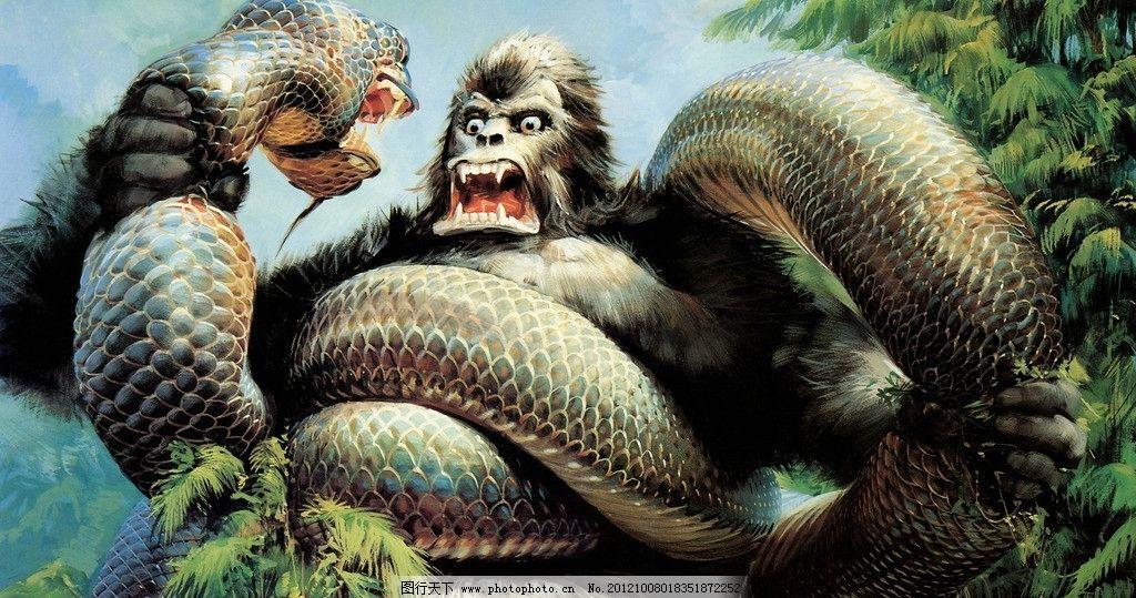 巨蟒 巨蚺 蛇 猩猩 电影 海报 cg 绘画 动漫 攻击 动漫人物 动漫动画
