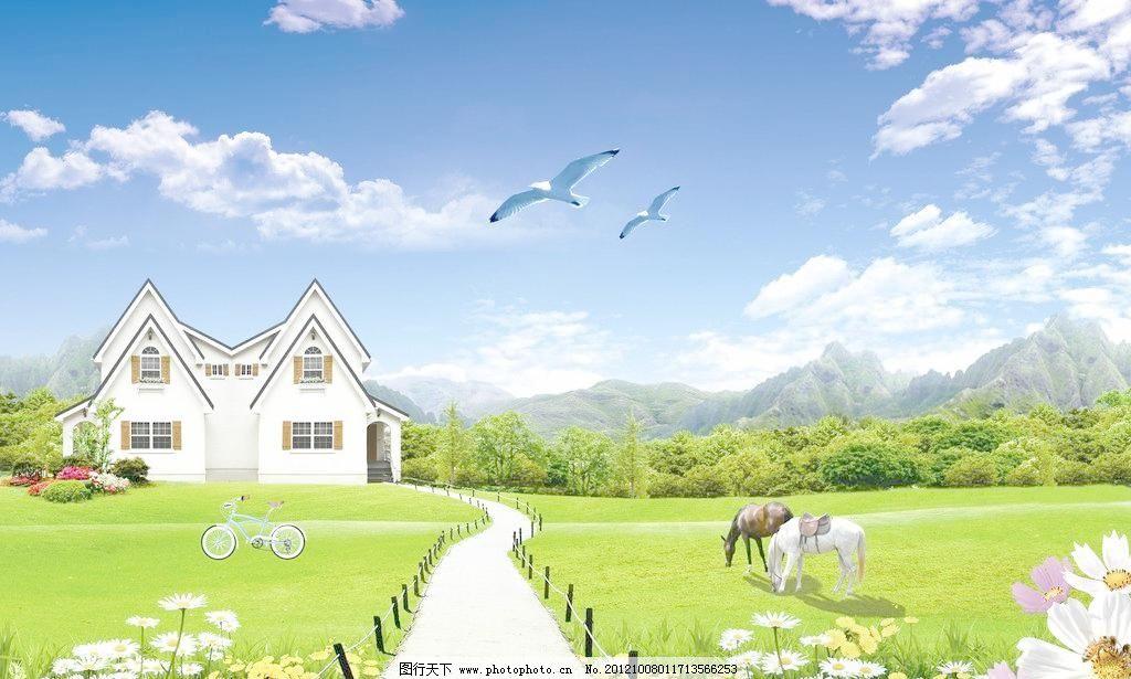 菊花 白云 蓝天白云 云彩 草地 草坪 树林 森林 树 马路 沙路 远山