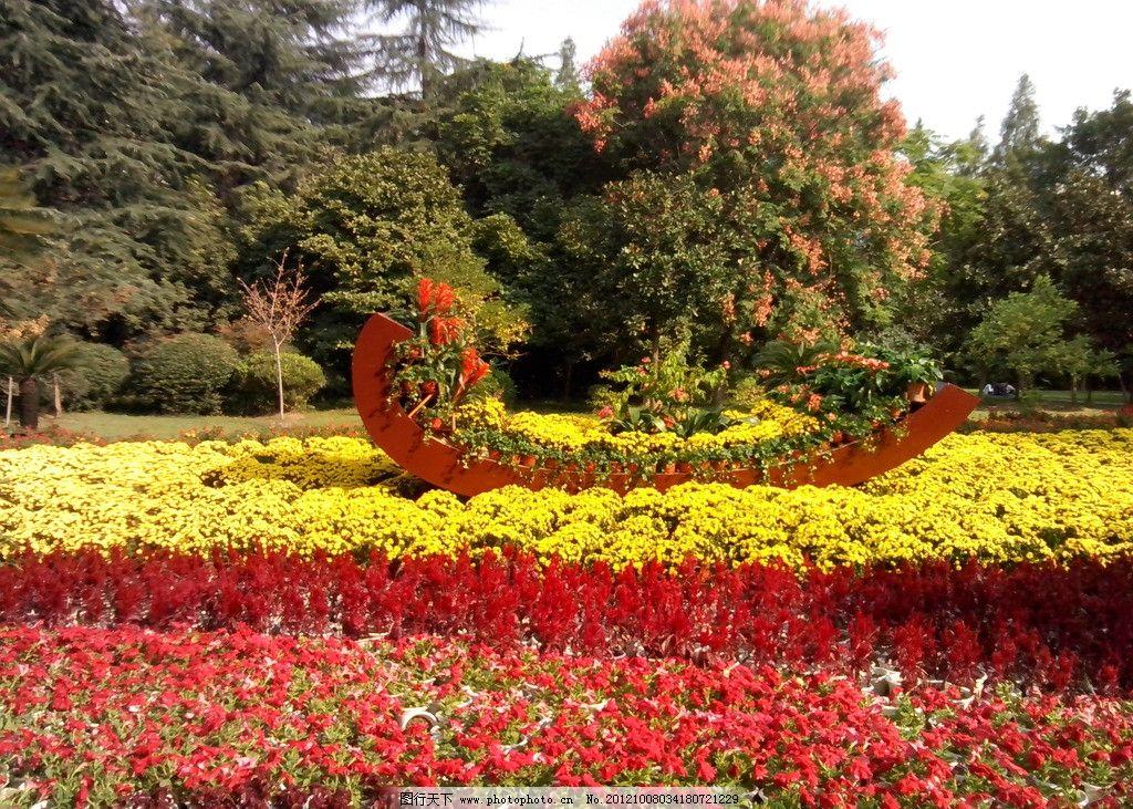 自然风景 公园 摄影 景观 花园 树木 国内摄影 花丛 菊花 旅游摄影