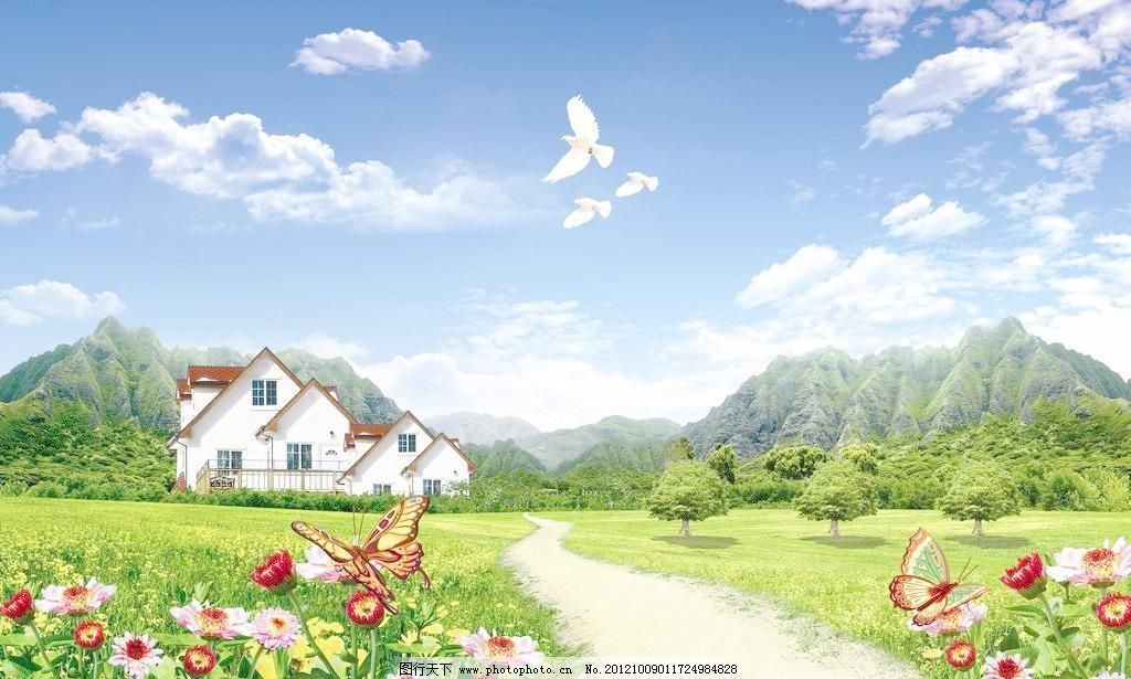 大雁往南飞 花 花草 房子 蓝天 草原 太阳花 菊花 白云 蓝天白云 云彩