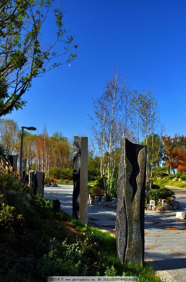 唐岛湾公园图片