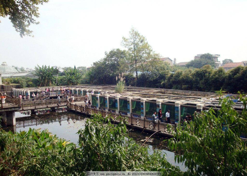 文化长廊 植被 水底植物展览区 武汉科技植物园 绿树 游客 观光 园林