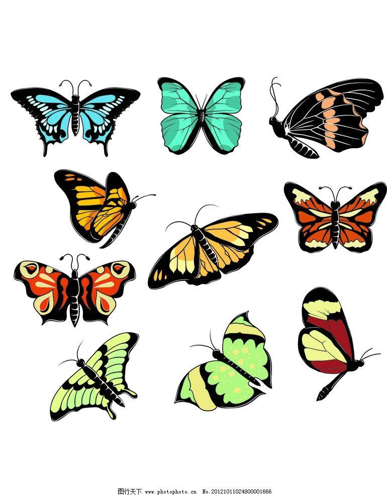 蝴蝶 彩色 飞舞 昆虫 生物世界 设计 150dpi jpg