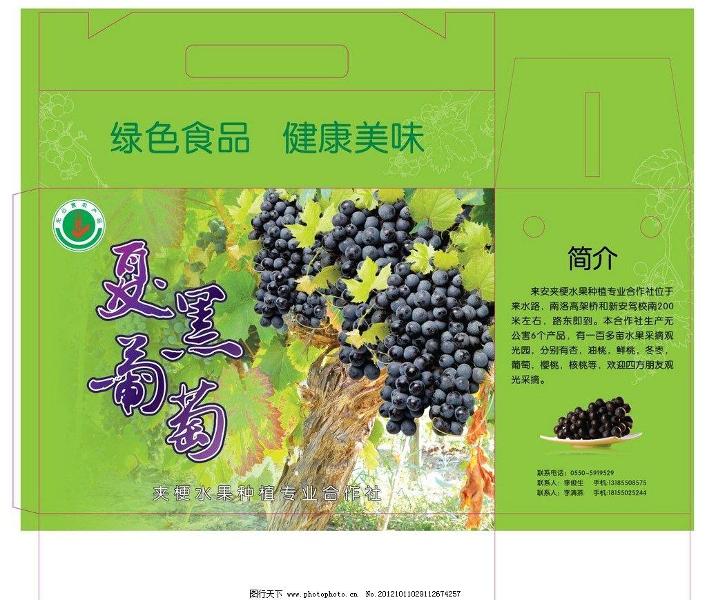 夏黑葡萄 包装盒 绿色 健康 安全 葡萄 食品 生活 礼品盒 包装设计