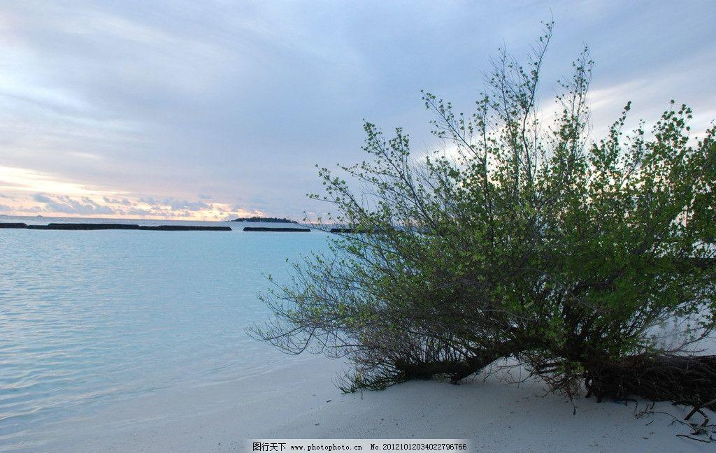 椰子岛海边图片