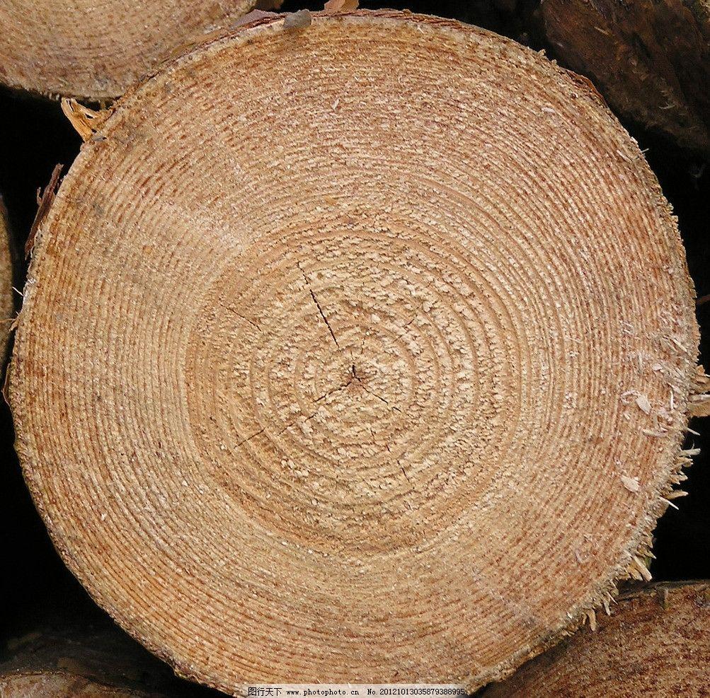木头 木材 原木 木料 储备 绿色 能源 资源 自然资源 环境保护