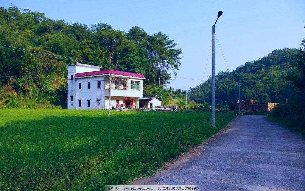 梅州荷泗蕉坑民俗村落 风景 梅州 梅县荷泗蕉坑 民俗村落 高丘 水稻