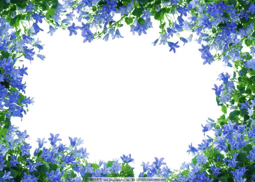 花边 植物 绿叶 背景 鲜花 花卉 花草 设计素材 花边花纹 底纹边框