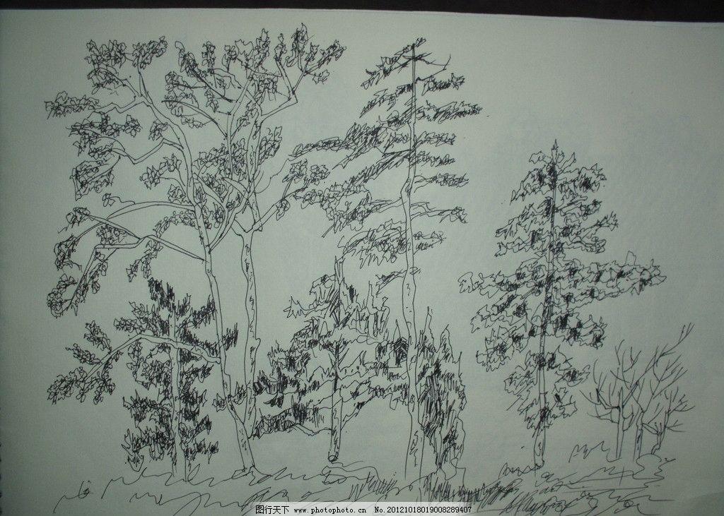 树木钢笔画图片