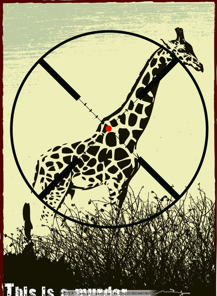 保护野生动物 禁止猎杀动物图片
