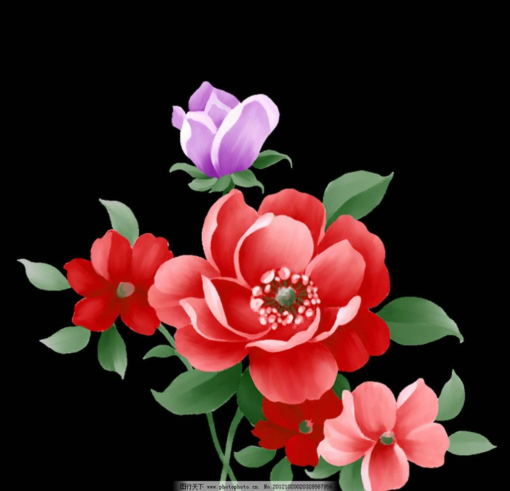 手绘花朵 手绘 花卉 花纹 月季花 花朵 印花图案 花边花纹 底纹边框