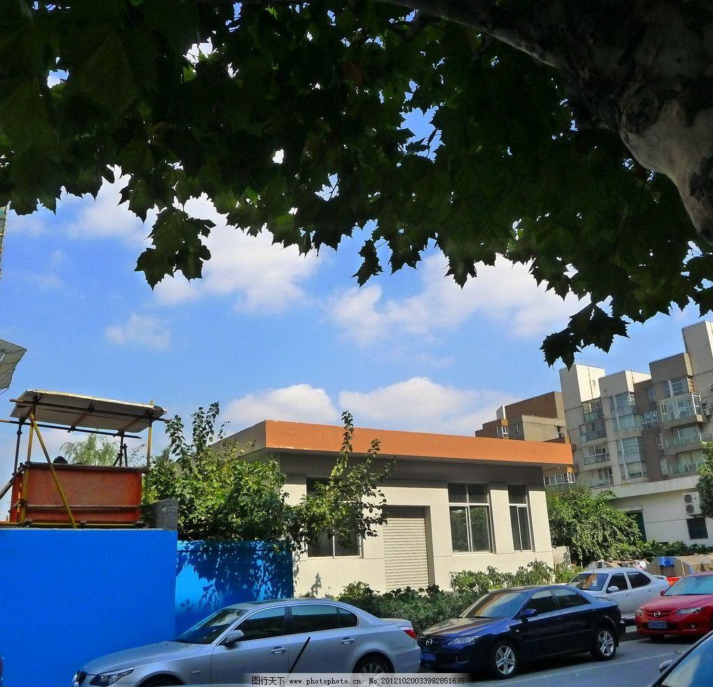 上海 浦电路图片