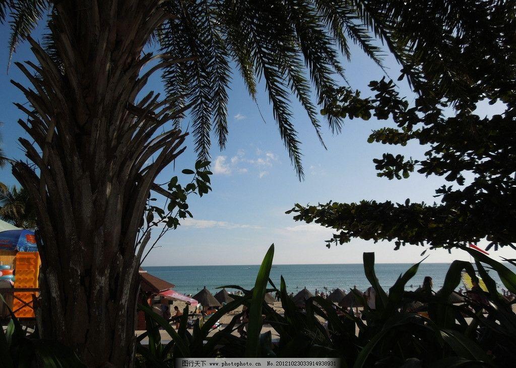 三亚海边风光图片 三亚 大海 椰树 风光 国内旅游 旅游摄影 摄影 300