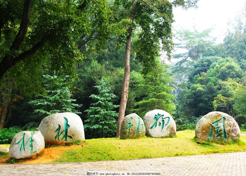 桂林动物园图片