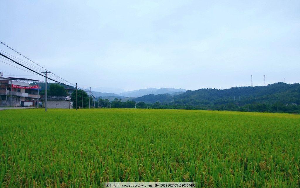 乡村 田园风光图片