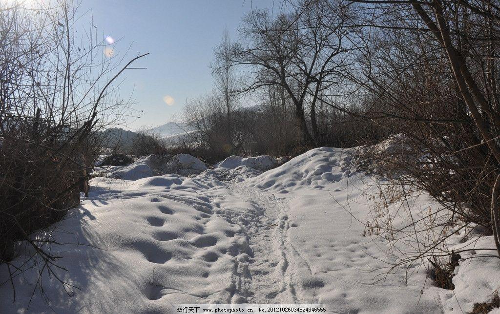雪景 乡村 树林 田园风光 自然景观 摄影 300dpi jpg