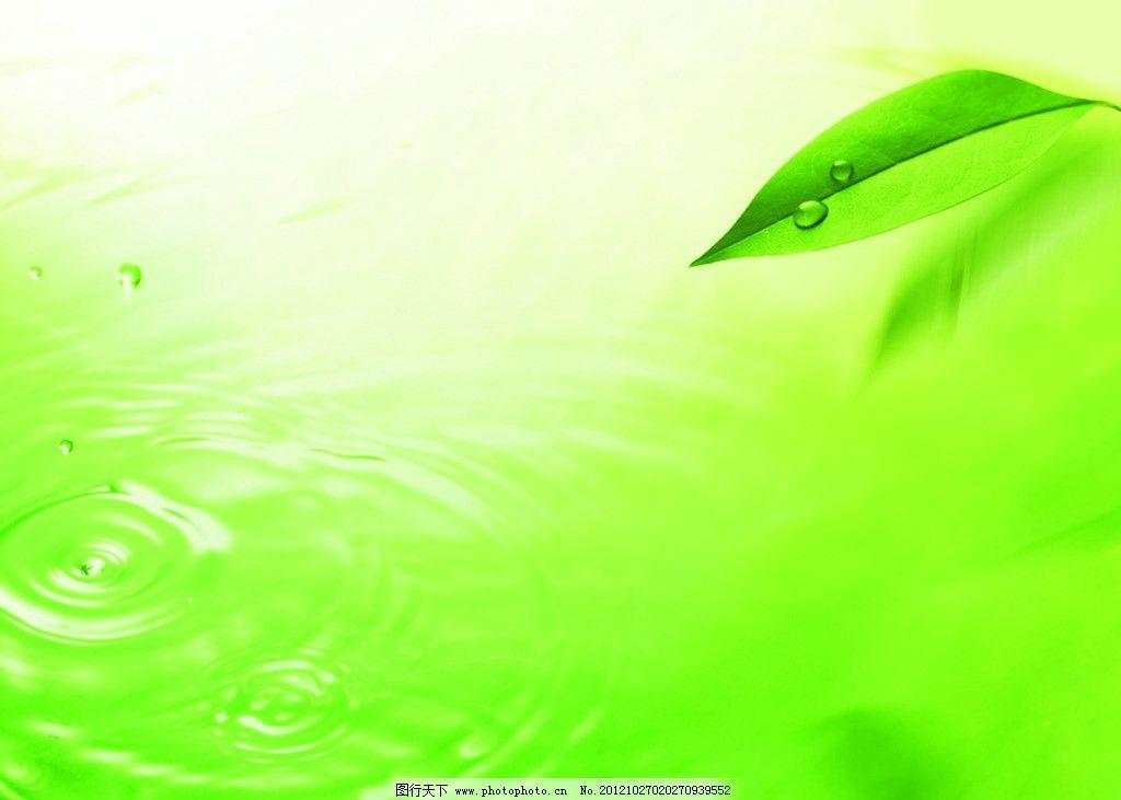 绿叶背景 绿叶 叶子 水纹 水珠 水滴 滑落 绿色 背景底纹 底纹边框 设