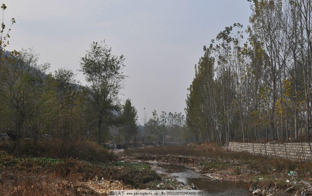 乡村小河 乡村 田园风光 小河 树木 小石头 流水 自然景观 摄影 300