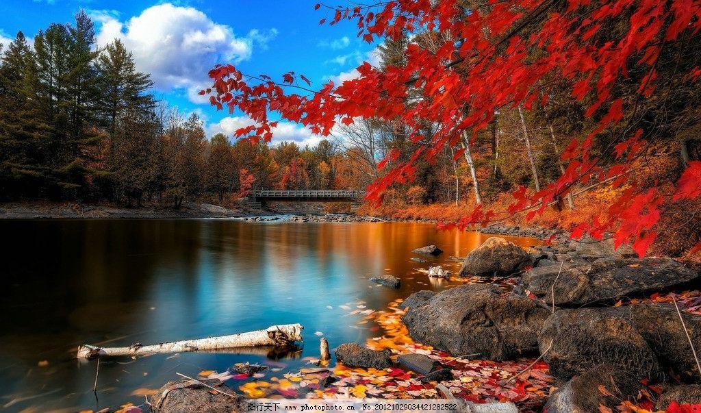 自然风景 枫叶 蓝天 白云 湖水 树林 摄影