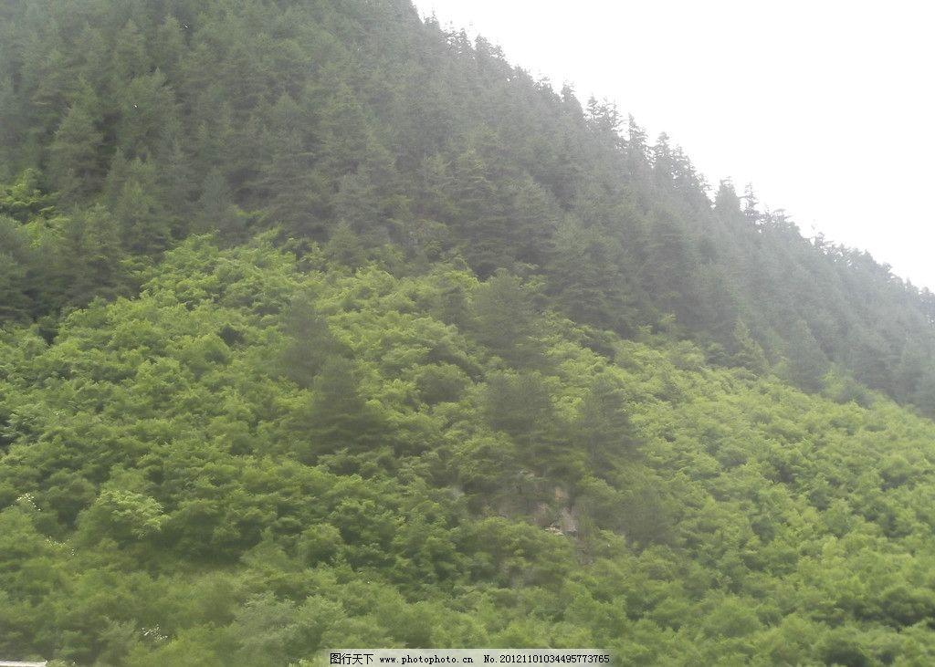 山區 大山 綠樹 天空 草地 山水風景 自然景觀 攝影 72dpi jpg