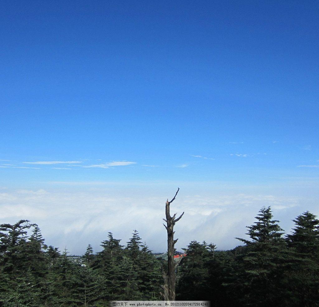 峨眉山 蓝天 白云 天空 树林 树木 山顶 自然风景 旅游摄影