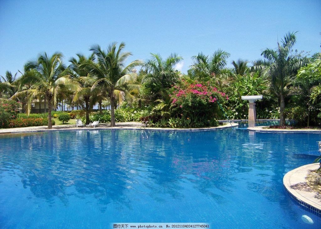 热带雨林 热带树 游泳池 自然风景 海南岛 摄影素材 旅游摄影 摄影 30
