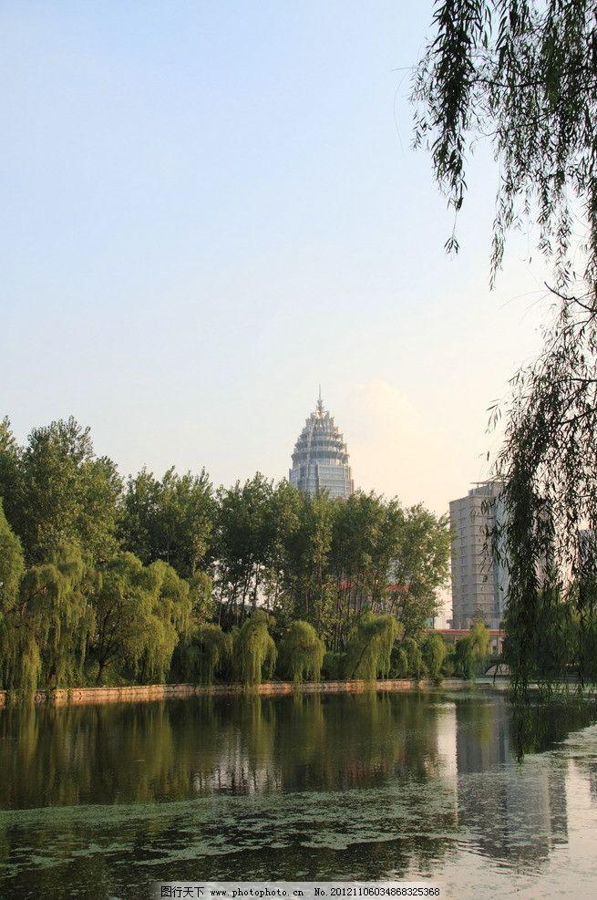 都市风景 河流 柳树 楼房 天空 城市 绿化 摄影