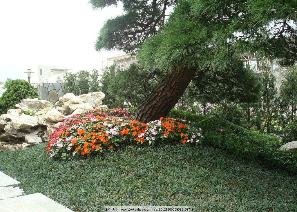 室外园林 别墅园林 园林景观 景观设计 庭院摄影 别墅庭院 花园 花卉