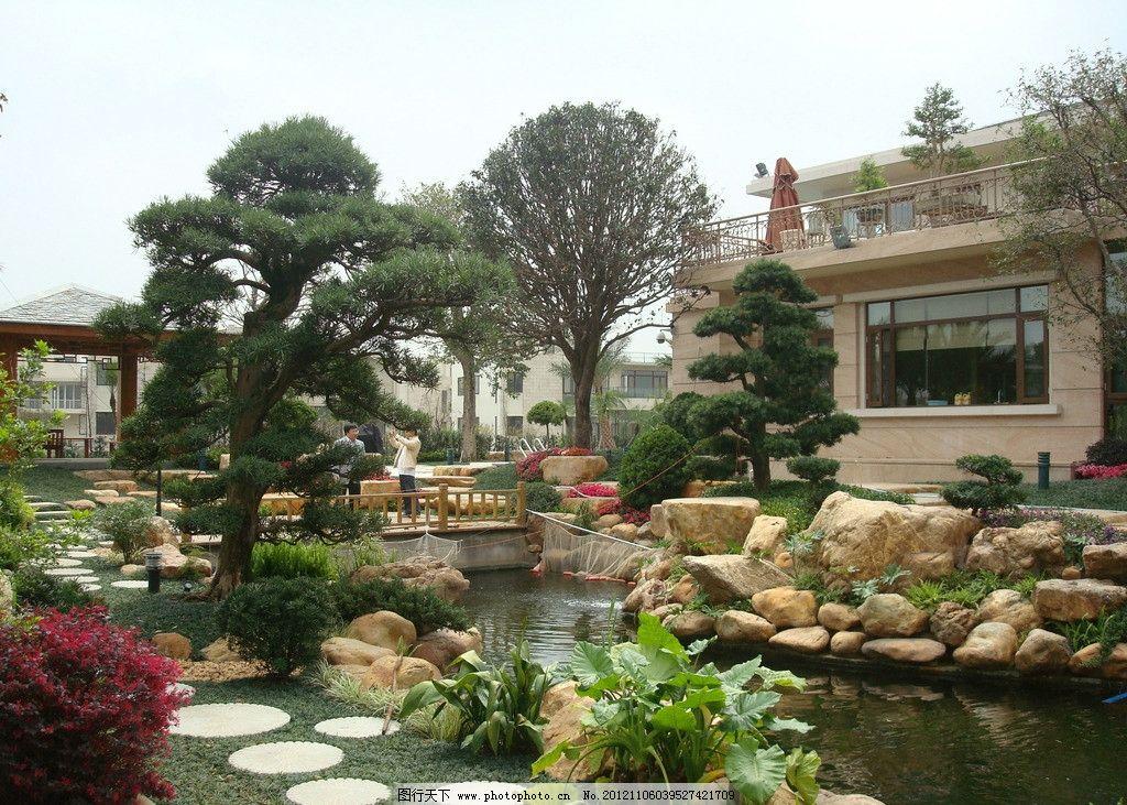 别墅园林 园林景观 景观设计 庭院摄影 别墅庭院 矮柱灯 鱼池 水池