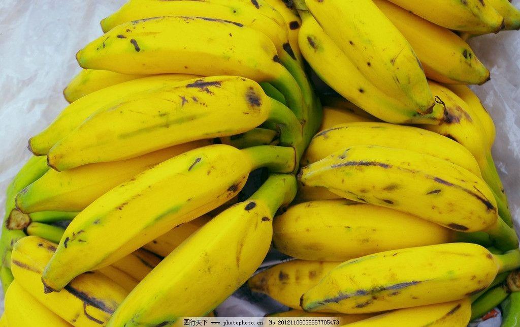 水果 香蕉 汽车销售 车台 透明 塑料布 集散 零售 饮料副食品 生物