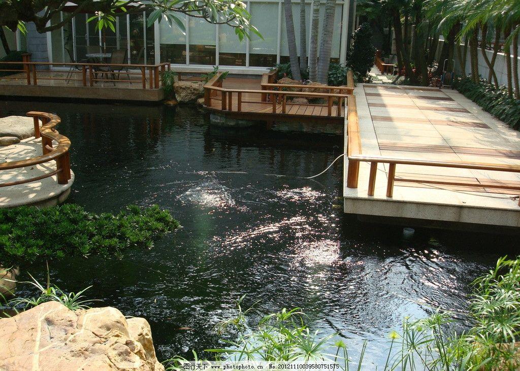 室内园林 园林景观 景观设计 庭院摄影 别墅庭院 花园 花卉 水景 鱼池
