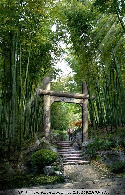 竹林公园效果图 自然公园 景区 景观 风景名胜 旅游景点 植物园 竹林