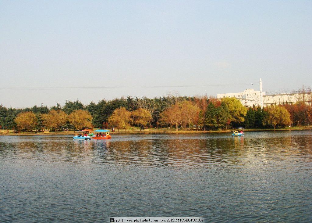 上海共青森林公园风光图片_自然风景_自然景观_图行
