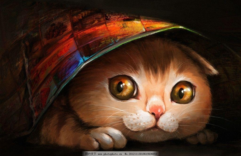 猫猫 大眼睛 金丝猫 金眼猫 花猫 手绘 其他 动漫动画 设计 96dpi jpg