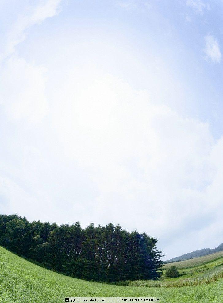 草地蓝天风景图片 蓝天 白云 草地 青草 广角风景 大自然风景 大树