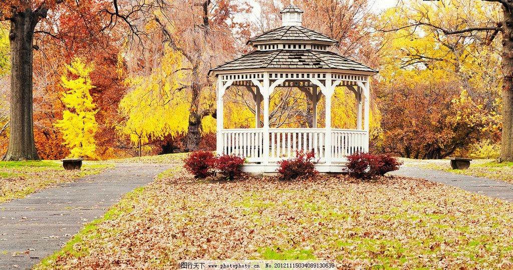 公园白色亭子 日本 秋天 枫叶 落叶 风景 自然 国外旅游 旅游摄影