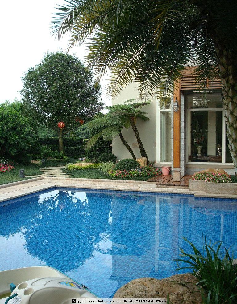 别墅游泳池庭院