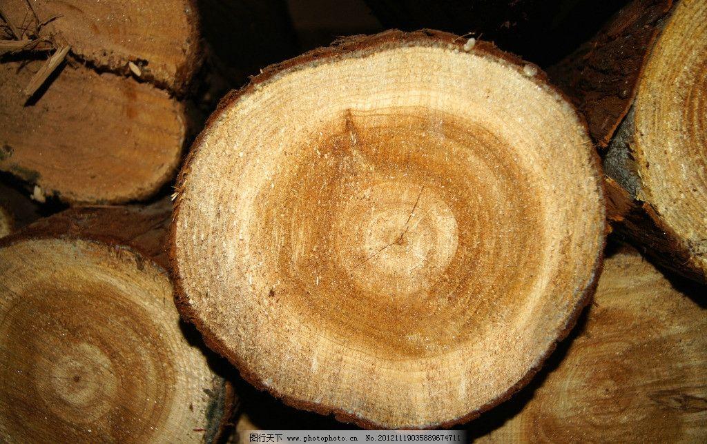 木头 木 年轮 裂纹 树木树叶 生物世界 摄影 350dpi jpg