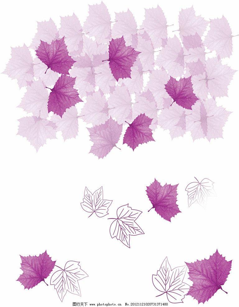 紫色树叶 紫色 树叶 叶子 枫叶 线条 手绘 纹理 时尚 移门 设计素材