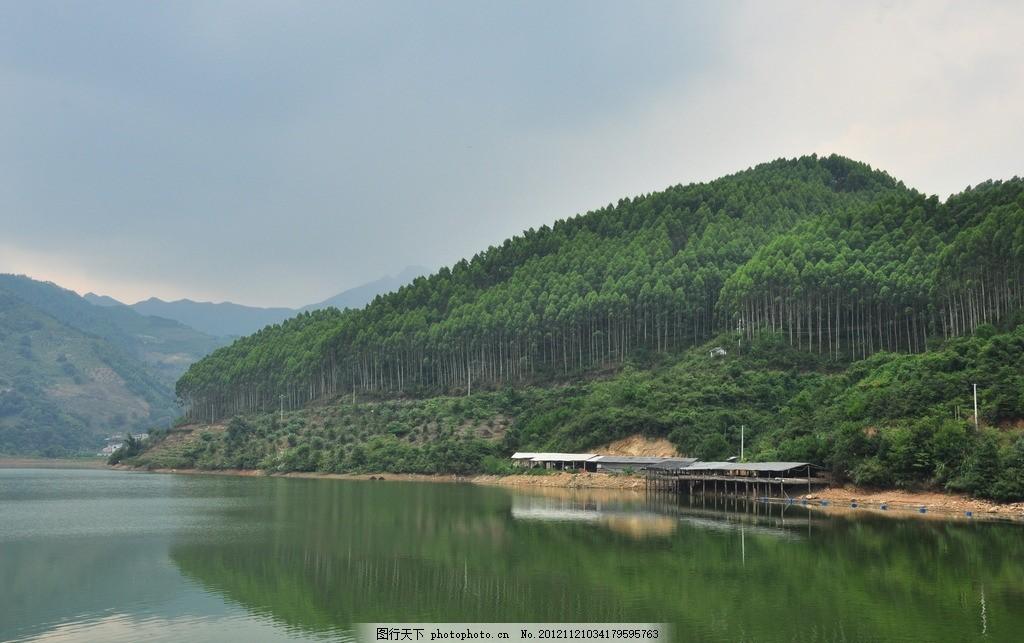 林木 桉树 山水 风景 绿山 山峦 绿树 水面 碧水 倒影 摄影