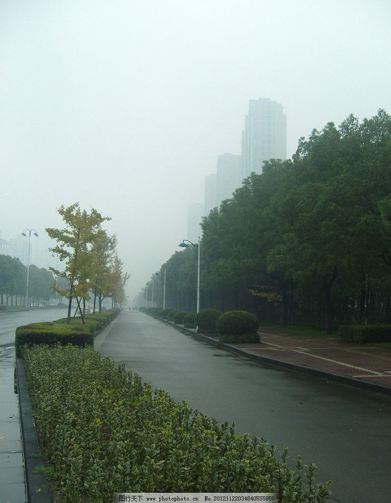 晨雾 树林 街景 马路 自然风景 自然景观 摄影 72dpi jpg