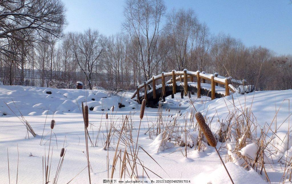 长春净月潭 雪景 公园风景 园林风景 树木 白雪 冬天 木桥 自然风景