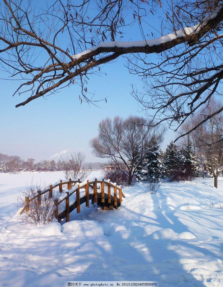 长春净月潭 雪景 公园风景 园林风景 树木 白雪 冬天 石头 木桥 自然