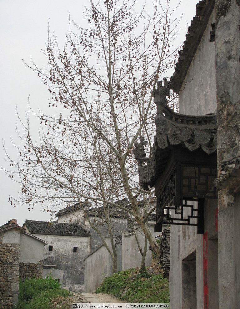 老房子 枯树 秋天 错落 古典 古老 古镇 小道 青瓦 建筑摄影 建筑园林