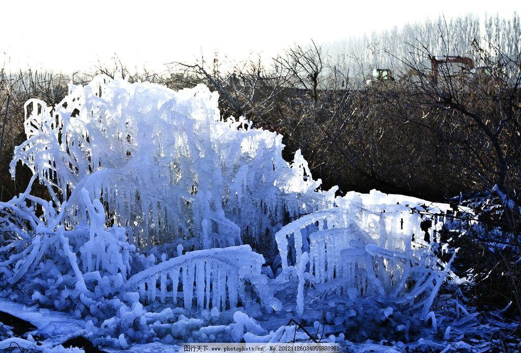 冰挂 水晶花 小树 小草 结冰 寒冷 树上冰挂 树上 水晶树 雨凇 树挂
