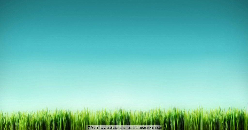 蓝天绿草 蓝天 绿草 绿油油 葱绿 草地 背景底纹 底纹边框 设计 100